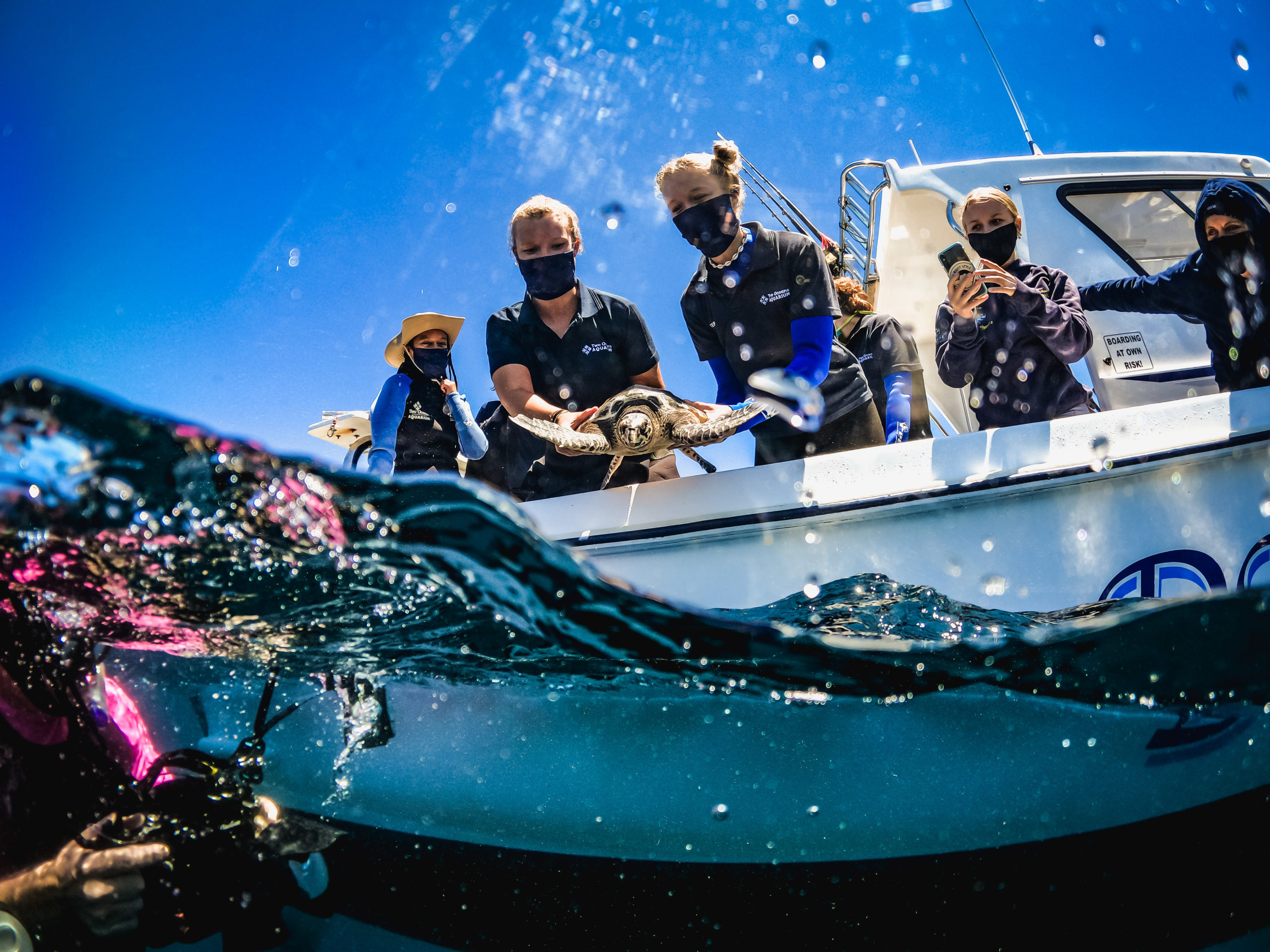 Cape2Rio Race 2023 Signs A Partnership Agreement With The Two Oceans Aquarium Education Foundation